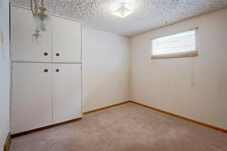Photo 31: 2728 LIONEL Crescent SW in Calgary: Lakeview Detached for sale : MLS®# C4303178
