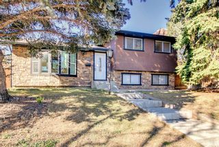 Photo 2: 1931 Pinetree Crescent NE in Calgary: Pineridge Detached for sale : MLS®# A1153335