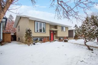 Photo 2: 4131 Doverview Drive SE in Calgary: Dover Detached for sale : MLS®# A1063702