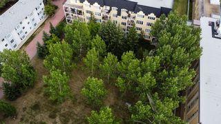 Photo 50: 316 9820 165 Street NW in Edmonton: Zone 22 Condo for sale : MLS®# E4255876