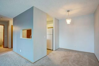 Photo 10: 405 525 56 Avenue SW in Calgary: Windsor Park Apartment for sale : MLS®# A1143592