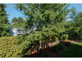 Photo 9: 306 1121 HOWIE AVENUE in Coquitlam: Central Coquitlam Condo for sale : MLS®# R2023398