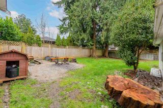 Photo 33: 11720 98 Avenue in Surrey: Royal Heights House for sale (North Surrey)  : MLS®# R2542310