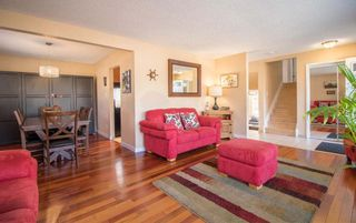 Photo 6: 3509 105 Street Street NW in Edmonton: Zone 16 House for sale : MLS®# E4239908