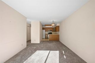 """Photo 7: 108 11578 225 Street in Maple Ridge: East Central Condo for sale in """"The Willows"""" : MLS®# R2573953"""