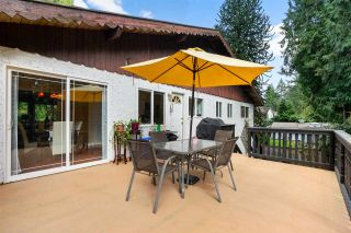 """Photo 29: 19750 47 Avenue in Langley: Langley City House for sale in """"Mason heights"""" : MLS®# R2554877"""