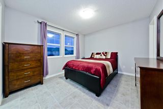 Photo 8: 169 SKYVIEW RANCH DR NE in Calgary: Skyview Ranch House for sale : MLS®# C4278111