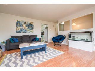 Photo 3: 11722 203RD STREET in Maple Ridge: Southwest Maple Ridge House for sale : MLS®# R2165416