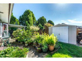 Photo 18: 9237 203B Street in Langley: Walnut Grove House for sale : MLS®# R2273639