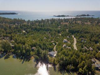 Photo 80: 1338 Pacific Rim Hwy in : PA Tofino House for sale (Port Alberni)  : MLS®# 872655