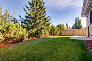 Photo 44: 10424 39A Avenue in Edmonton: Zone 16 House for sale : MLS®# E4264425