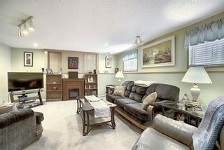 Photo 19: 305 Martinwood Place NE in Calgary: Martindale Detached for sale : MLS®# A1038589