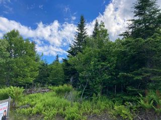 Photo 21: Lot 102 Point Road in Clam Bay: 35-Halifax County East Vacant Land for sale (Halifax-Dartmouth)  : MLS®# 202116103