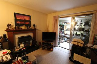 Photo 19: 2475 Forest Drive: Blind Bay House for sale (Shuswap)  : MLS®# 10128462