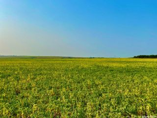 Photo 30: Unvoas Farm in Swift Current: Farm for sale (Swift Current Rm No. 137)  : MLS®# SK864766