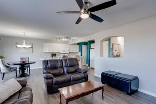 Photo 13: 227 Silver Springs Way NW: Airdrie Detached for sale : MLS®# A1083997