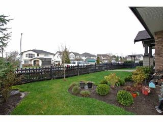 """Photo 13: 62 21867 50TH Avenue in Langley: Murrayville Townhouse for sale in """"WINCHESTER"""" : MLS®# F1432608"""