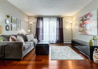 Photo 5: 304 545 18 Avenue SW in Calgary: Cliff Bungalow Apartment for sale : MLS®# A1129205