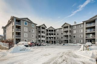 Photo 20: 1306 604 8 Street SW: Airdrie Apartment for sale : MLS®# A1066668