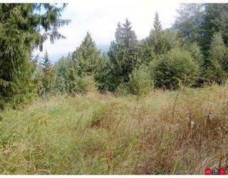 Photo 6: 51365 RUDDOCK RD in Chilliwack: Eastern Hillsides Land for sale : MLS®# H2503417