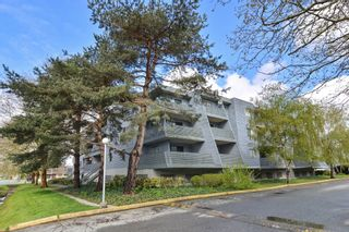 "Photo 18: 311 17661 58A Avenue in Surrey: Cloverdale BC Condo for sale in ""WYNDHAM ESTATES"" (Cloverdale)  : MLS®# R2158983"