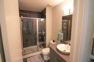 Photo 14: 310 10611 117 Street in Edmonton: Zone 08 Condo for sale : MLS®# E4249061