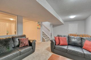 Photo 37: 358 Coventry Circle NE in Calgary: Coventry Hills Detached for sale : MLS®# A1091760