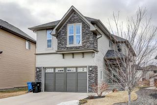 Main Photo: 91 SILVERADO RIDGE Crescent SW in Calgary: Silverado Detached for sale : MLS®# A1089884
