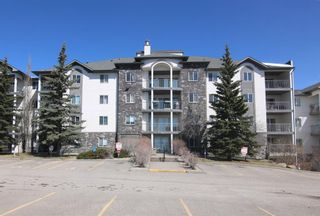 Photo 1: 509 55 ARBOUR GROVE Close NW in Calgary: Arbour Lake Apartment for sale : MLS®# A1096357