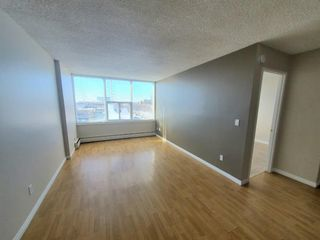 Photo 14: 304 4820 47 Avenue: Red Deer Apartment for sale : MLS®# A1061234
