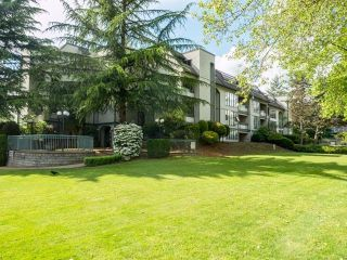 "Photo 25: 310 2925 GLEN Drive in Coquitlam: North Coquitlam Condo for sale in ""Glenborough"" : MLS®# R2615967"