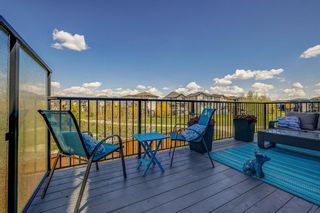 Photo 43: 77 Walden Close SE in Calgary: Walden Detached for sale : MLS®# A1106981
