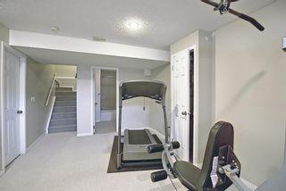 Photo 25: 8230 Saddleridge Drive NE in Calgary: Saddle Ridge Detached for sale : MLS®# A1085120