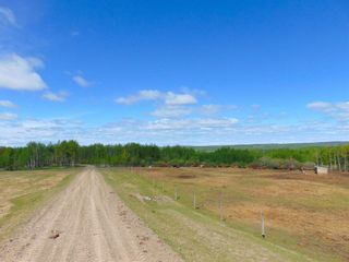 Photo 27: 13934 PACKHAM FRONTAGE Road: Charlie Lake Agri-Business for sale (Fort St. John (Zone 60))  : MLS®# C8039465