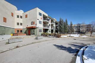 Photo 39: 302 69 Springborough Court SW in Calgary: Springbank Hill Apartment for sale : MLS®# A1085302