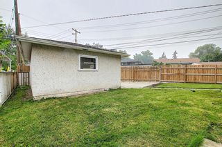 Photo 43: 1936 Matheson Drive NE in Calgary: Mayland Heights Detached for sale : MLS®# A1130969