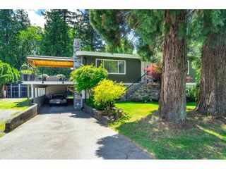 Photo 3: 19900 50 Avenue in Langley: Langley City House for sale : MLS®# R2583080