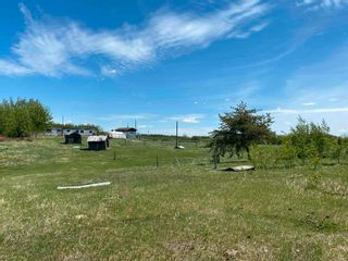 Photo 43: 24402 Township Road 603A: Rural Westlock County House for sale : MLS®# E4247251