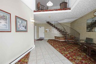 """Photo 19: 203 32040 PEARDONVILLE Road in Abbotsford: Abbotsford West Condo for sale in """"Dogwood Manor"""" : MLS®# R2166027"""