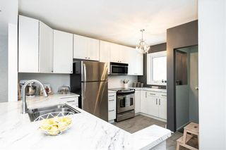 Photo 10: 649 Greenwood Place in Winnipeg: West End Residential for sale (5C)  : MLS®# 202006694