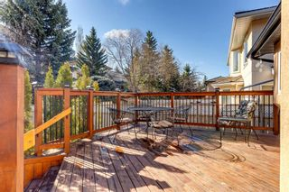 Photo 41: 71 Mt Robson Circle SE in Calgary: McKenzie Lake Detached for sale : MLS®# A1102816