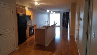 Photo 4: 206 10503 98 Avenue in Edmonton: Zone 12 Condo for sale : MLS®# E4233148