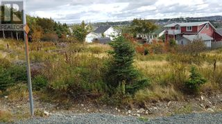 Photo 4: 8 & 10 Robs Road in Paradise: Vacant Land for sale : MLS®# 1229482
