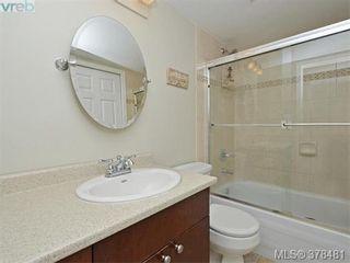 Photo 14: 203 649 Bay St in VICTORIA: Vi Downtown Condo for sale (Victoria)  : MLS®# 759981