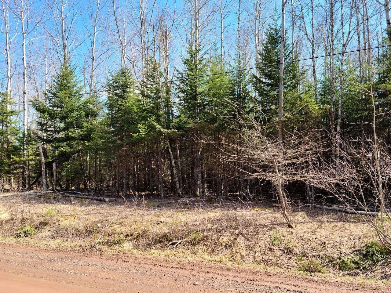 Main Photo: Lot Valley Road in Manganese Mines: 104-Truro/Bible Hill/Brookfield Vacant Land for sale (Northern Region)  : MLS®# 202109383