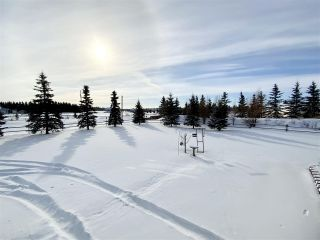 Photo 46: 2-471082 RR 242A: Rural Wetaskiwin County House for sale : MLS®# E4228215