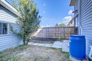 Photo 29: 3020 Dover Crescent SE in Calgary: Dover Semi Detached for sale : MLS®# A1147762
