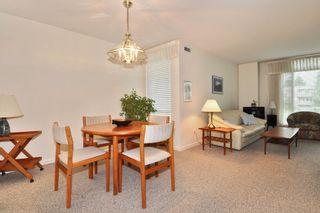 Photo 5: 216 19122 122 Avenue in Pitt Meadows: Central Meadows Condo for sale : MLS®# R2302440