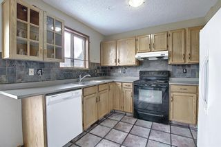 Photo 7: 23 Applecrest Court SE in Calgary: Applewood Park Detached for sale : MLS®# A1079523