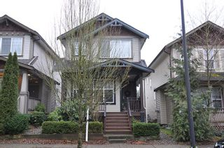 Photo 16: 24308 102A Avenue in Maple Ridge: Albion House for sale : MLS®# R2028967